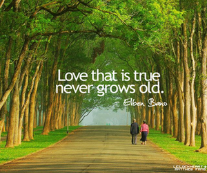 quote, old, and love image