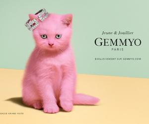 bijoux, pub, and gemmyo image