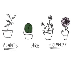 adorable, plants, and background image