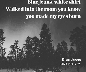black & white, blue jeans, and forest image