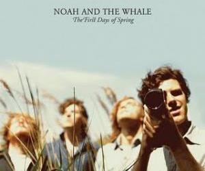 album cover, music, and noah and the whale image