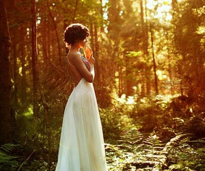 dress, forest, and white image