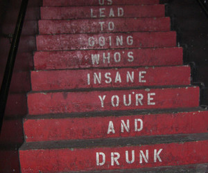 drunk, insane, and stairs image