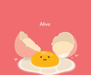 egg, alive, and wallpaper image
