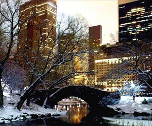 new york, Central Park, and winter image
