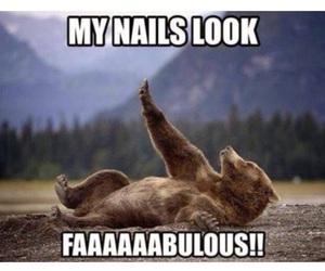 nails, funny, and bear image