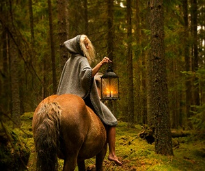 horse, forest, and girl image