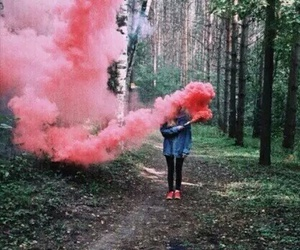 pink, smoke, and forest image