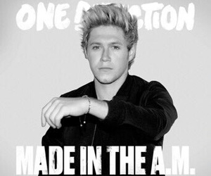one direction, niall horan, and made in the am image