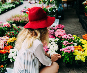 flowers, florist, and girl image