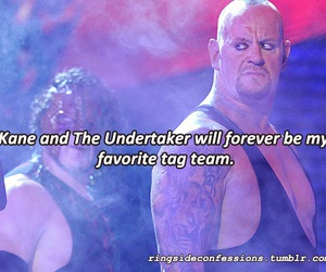 kane, wwe, and the undertaker image