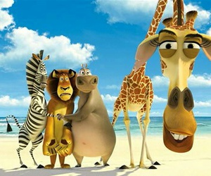 animals and cartoon image
