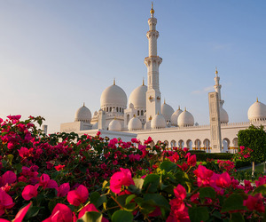 mosque, flowers, and islam image