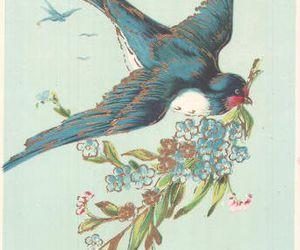 bird, blue, and freedom image