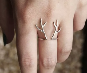 ring, deer, and hand image