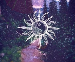 background, sun, and nature image