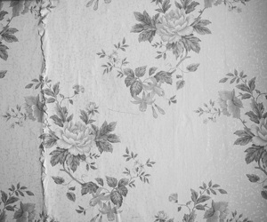 flowers, floral, and wallpaper image