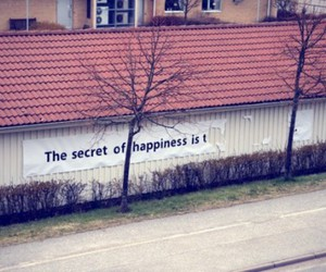 happiness, life, and street image