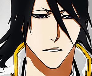 bleach, anime, and kuchiki byakuya image