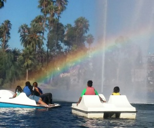 echo park and paddle boat image