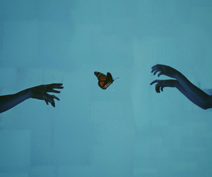art, butterfly, and hands image