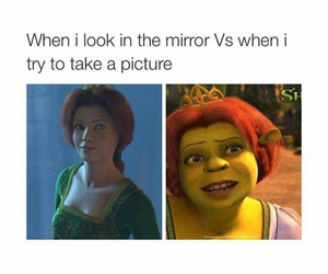 funny, mirror, and shrek image