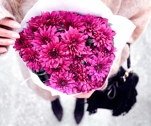 flowers, pink, and black image