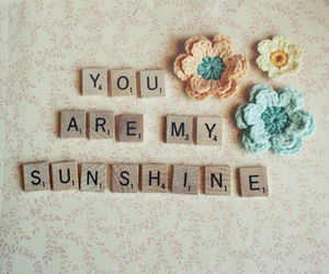 sunshine, flowers, and quotes image