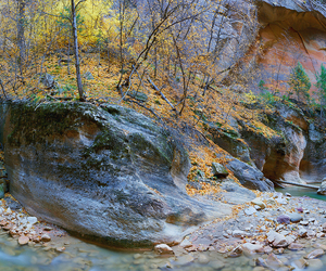 narrows and zion national park image