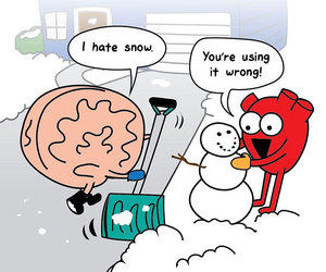 heart, brain, and snow image