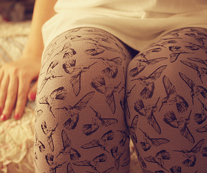 bird, tights, and leggings image