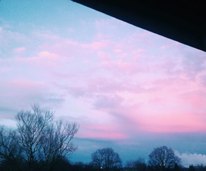 sky, pink, and tree image