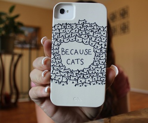 cat, iphone, and case image