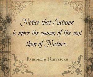 autumn, quote, and nature image