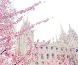 pink, flowers, and castle image