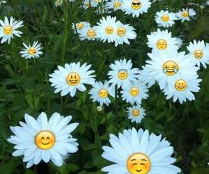 flowers, emoji, and daisy image