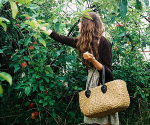 apples and girl image