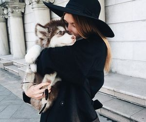 dog, girl, and fashion image