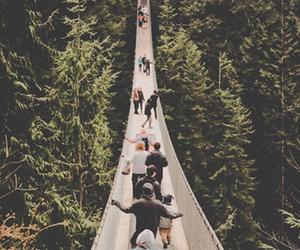 bridge, nature, and people image