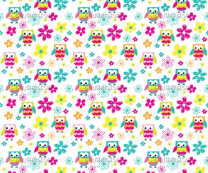 cartoon, colors, and owl image