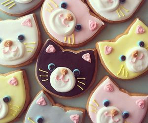 cat, food, and Cookies image