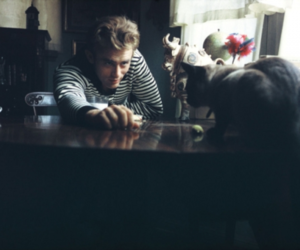 james dean and cat image