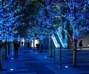 blue, light, and tree image