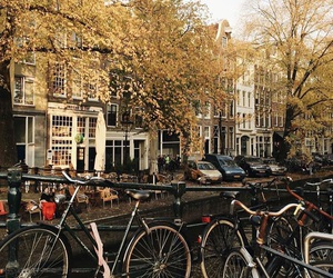 alternative, amsterdam, and artist image
