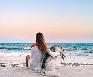 beach, girl, and dog image