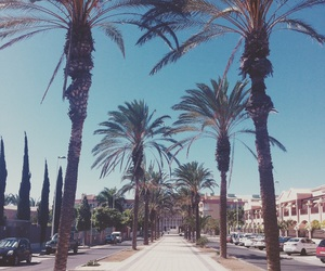 road, summer, and tenerife image