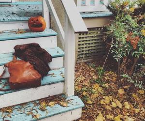 aesthetic, fall, and fur coat image