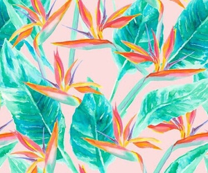 background, flowers, and leaves image
