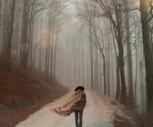 autumn, inspiration, and life image