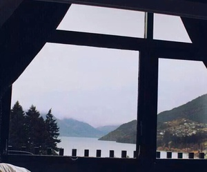 nature, bed, and window image